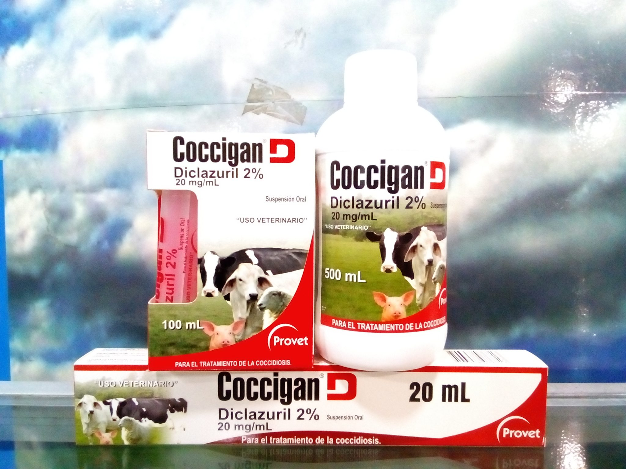 COCCIGAN D X 100 ML