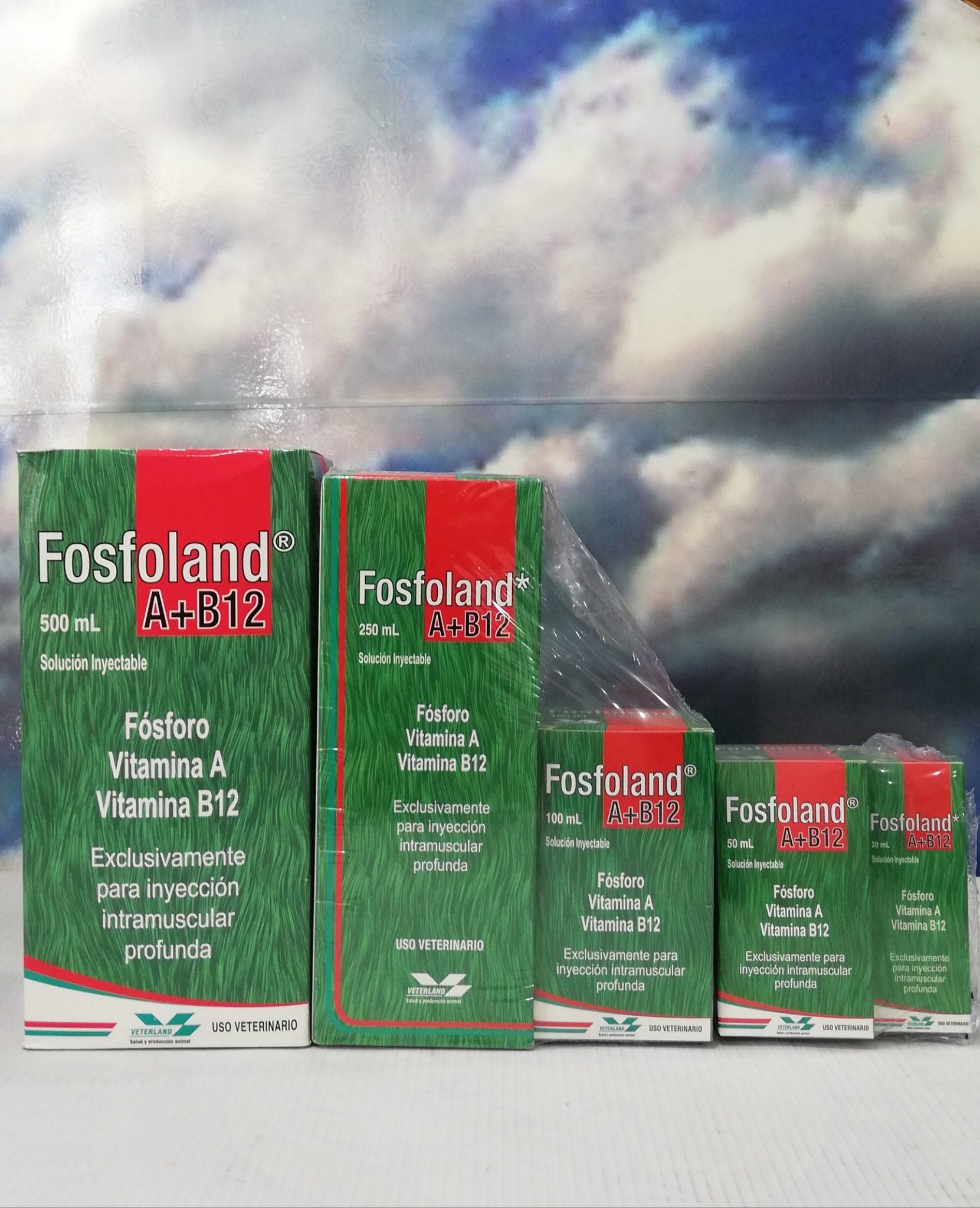 FOSFOLAND INY. X 250 ML
