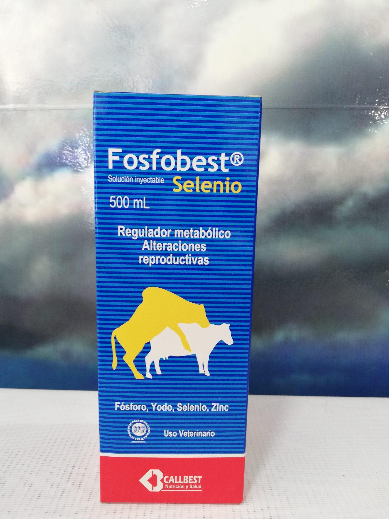 FOSFOBEST SE X 100 ML