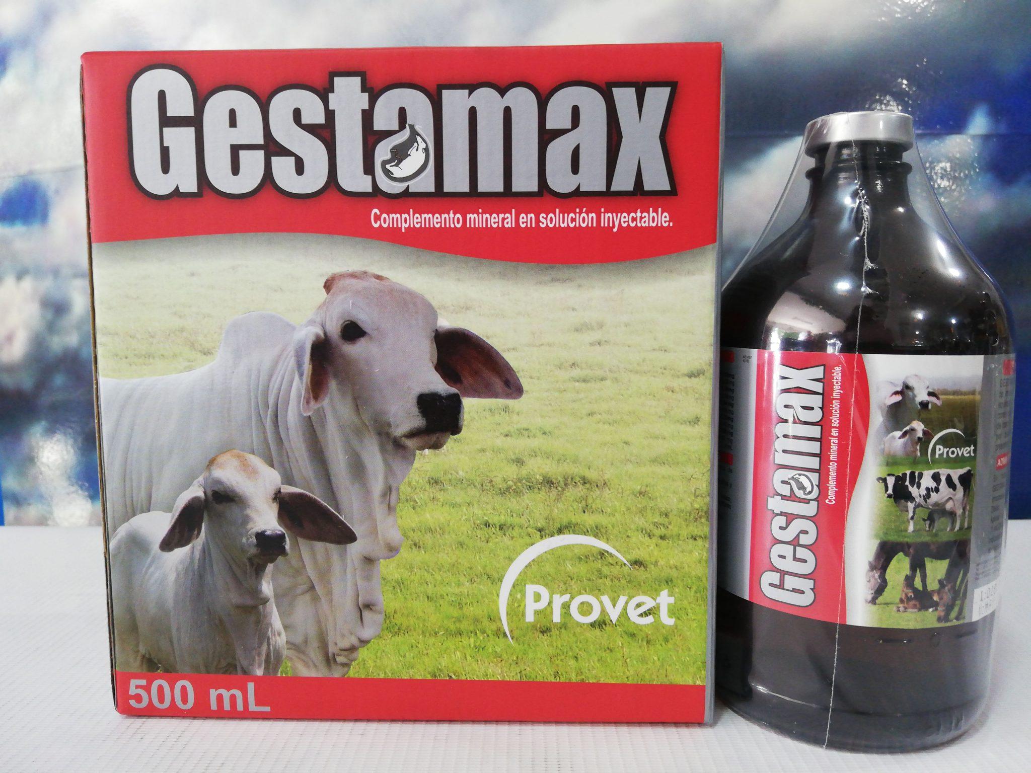 GESTAMAX INY X 500 ML