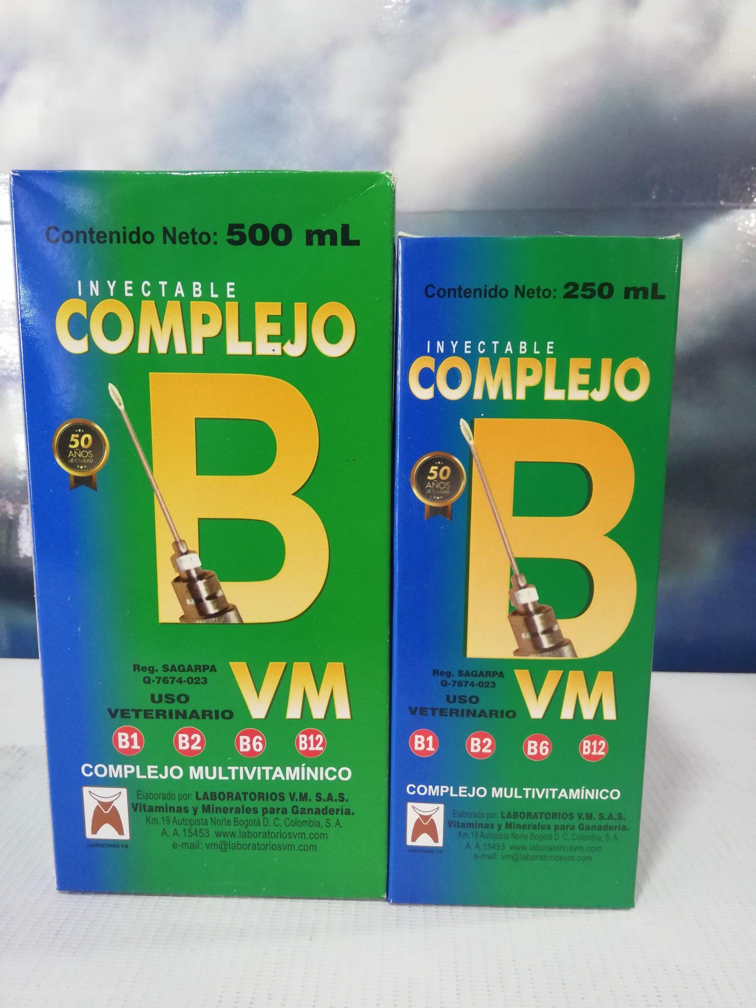 COMPLEJO B INY V.M X 500 ML
