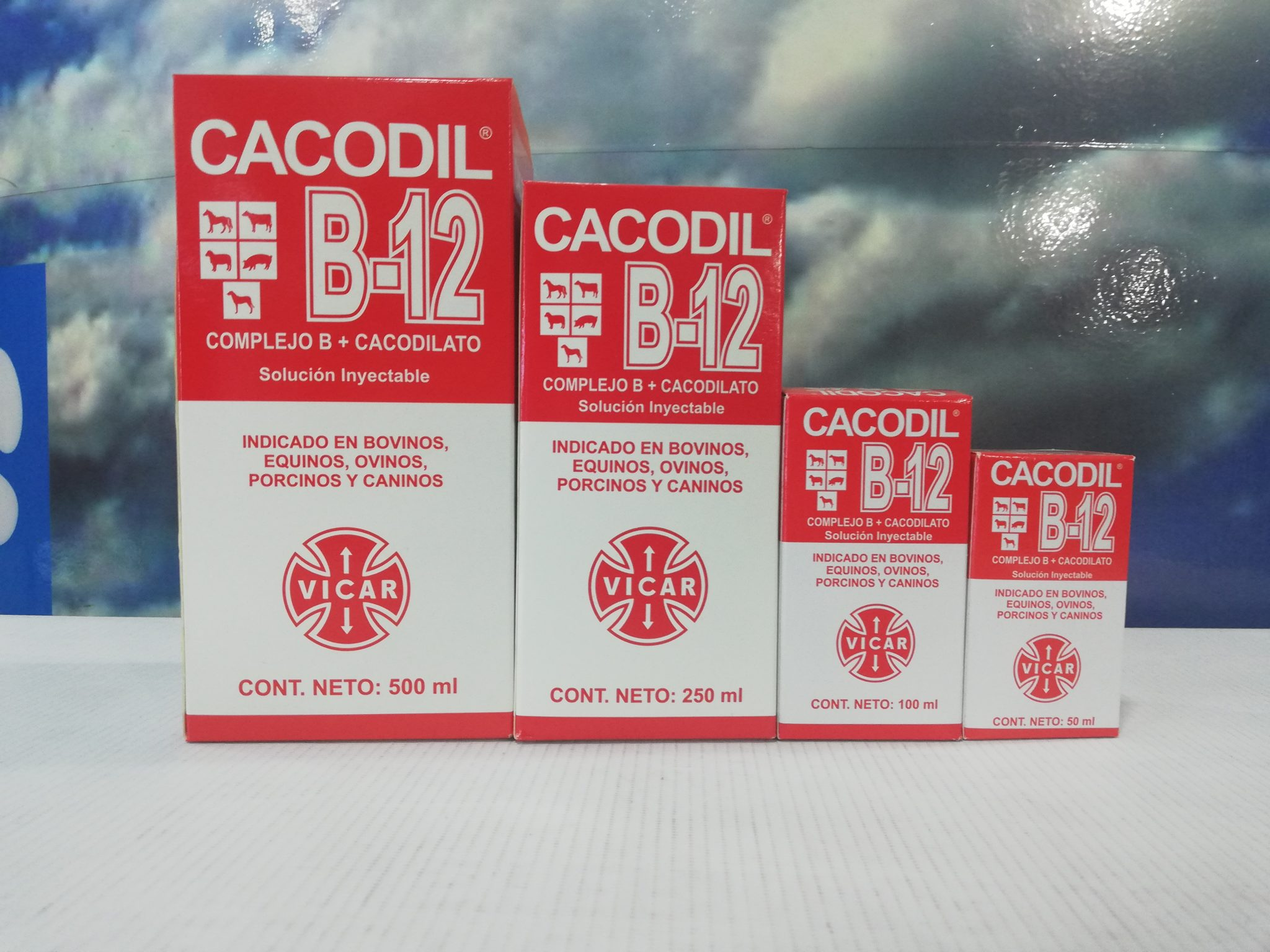 CACODIL B12 X 50 ML