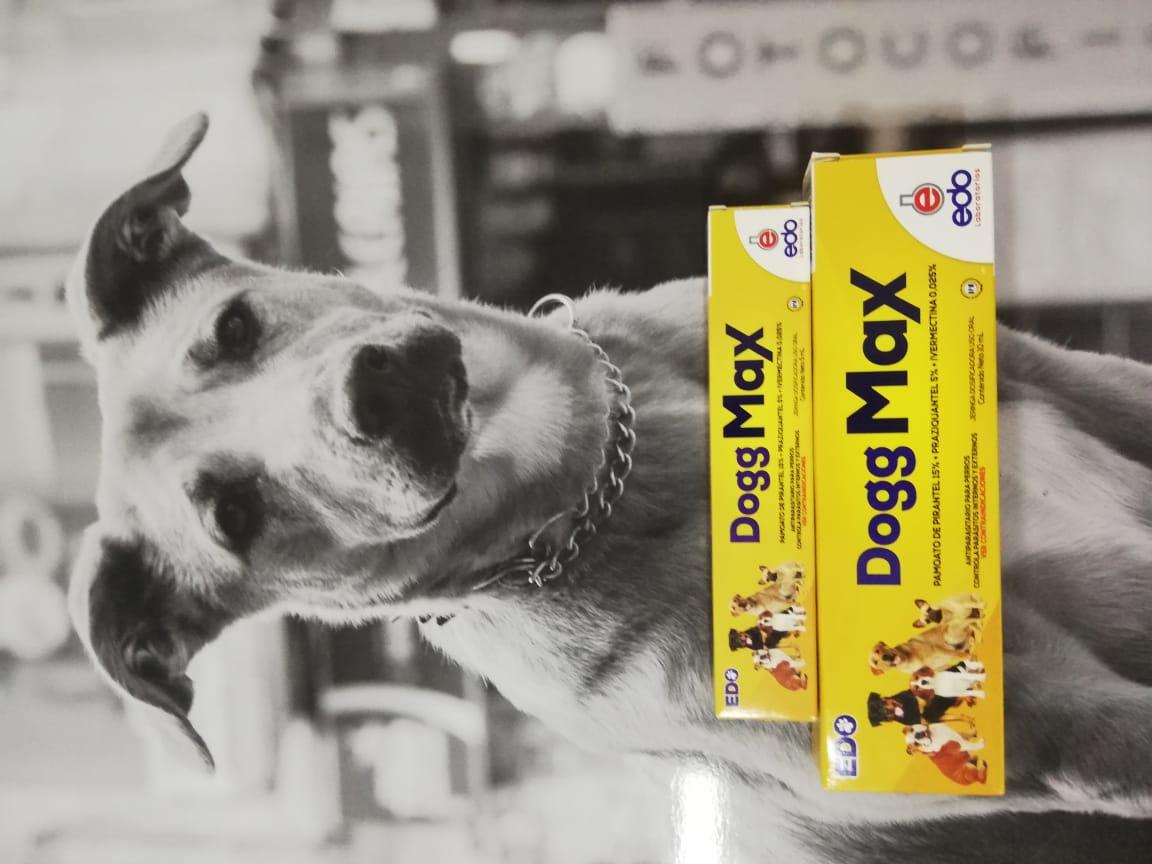 DOGG MAX X 10ML